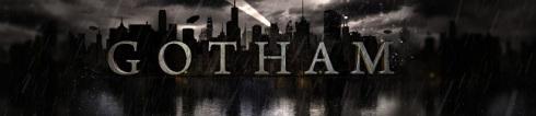Gotham series banner